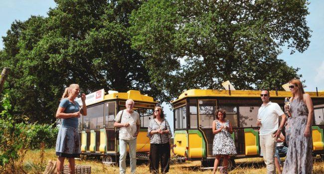 Treinrit langs de wijngaard